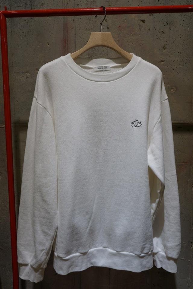 DSC03851